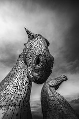 """fine art black & white - the majestic Kelpies, horse heads towering under a dark moody Scottish sky, Falkirk, Scotland, UK (grumpybaldprof) Tags: """"thekelpies"""" horsehead sculpture forth clyde canal """"rivercarron"""" """"thehelix"""" scotland uk """"andyscott"""" statues 2013 """"forthclydecanal"""" """"riverforth"""" steel """"stainlesssteel"""" """"30mtall"""" """"300tonnes"""" art artist mythology """"heavyhorse"""" bw blackwhite """"blackwhite"""" """"blackandwhite"""" noireetblanc monochrome """"fineart"""" ethereal striking artistic interpretation impressionist stylistic style contrast shadow bright dark black white illuminated moody mood atmorphere atmospheric majestic canon 7d """"canon7d"""" sigma 1020 1020mm f456 """"sigma1020mmf456dchsm"""" """"wideangle"""" ultrawide"""