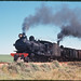 11.10.1969 Wilmington line - South Australia locos SAR T240 + T251 on ARHS special Farewell to Narrow Gauge (mb-s005-13)
