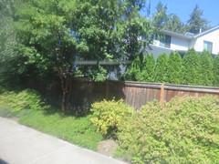 IMG_8362 (Andy E. Nystrom) Tags: bellevue washington wa bellevuewashington