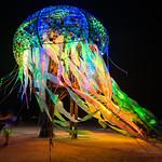 Medusa jellyfish thumbnail