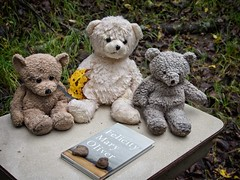 Adventures of Teddy Bears (Mulewings~) Tags: teddybears percy chance theguardian maryoliver desk thecreek toysgonewild stories toystories justforfun