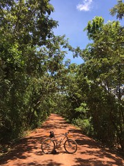 Cambodia, Kampong Speu Province, Krang Dei Vay District (Die Welt, wie ich sie vorfand) Tags: kingdomofcambodia cambodia កម្ពុជា kampongspeuprovince kampongspeu bicycle cycling moots rigormootis krangdeivaydistrict krangdeivay kirirom kiriromnationalpark ឧទ្យានជាតិគិរីរម្យ preahsuramaritkossamakkiriromnationalpark ឧទ្យានជាតិព្រះសុរាម្រិតកុសុមៈគិរីរម្ nationalhighway4 trialanderror ខេត្តកំពង់ស្