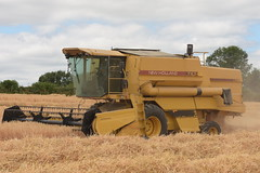 New Holland TX34 Combine Harvester cutting Winter Barley (Shane Casey CK25) Tags: new holland tx34 combine harvester cutting winter barley casenewholland newholland yellow nh cnh shanballymore grain harvest grain2018 grain18 harvest2018 harvest18 corn2018 corn crop tillage crops cereal cereals golden straw dust chaff county cork ireland irish farm farmer farming agri agriculture contractor field ground soil earth work working horse power horsepower hp pull pulling cut knife blade blades machine machinery collect collecting mähdrescher cosechadora moissonneusebatteuse kombajny zbożowe kombajn maaidorser mietitrebbia nikon d7200