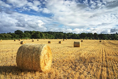 One from two weeks ago. Scene from the road to Harrogate (EricMakPhotography) Tags: sky straw bale scenery yorkshire
