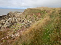 Sully Island d (Dugswell2) Tags: sullyisland p21 tidalisland siblet caton wales