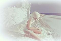 WindFall♥ (danaorianaor) Tags: