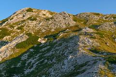 Trail to Lanževica, Julian Alps (happy.apple) Tags: ukanc radovljica slovenia si slovenija julijskealpe julianalps alps mountains triglavskinarodnipark gore summer poletje morning jutro