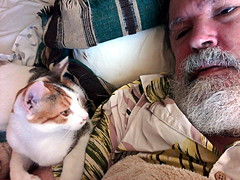 Tallhassee with Daddy (EmperorNorton47) Tags: portolahills california photo digital summer cat portrait caliby tabico calico beard catswithmenwithbeards bed selfie selfportrait pet