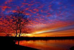 lake white sunrise 3 13 2013 (lisa welch) Tags: lake lakewhite