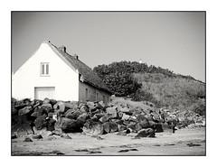 THE COTTAGE (NIKKI O BRIEN) Tags: blackandwhite bw mono cottage laytown beach sea ireland