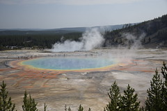 _DSC0879 (alnbbates) Tags: august2018 yellowstonetrip thermalfeatures grandprismaticspring contestnature