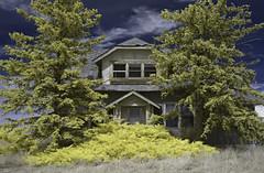 a day at grandma's house - infrared (eDDie_TK) Tags: colorado co coloradoseasternplains adamscountyco adamscounty infrared ir
