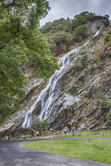 ... Powerscourt Waterfall ... (jane64pics) Tags: 52weeksof2018 week35 waterfall powerscourt powerscourtwaterfall wicklow cowicklow gardencounty janefriel janefriel2018 greystonescameraclub gcc green greenery nature naturallight naturalbeauty naturalworld