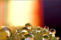waterdrops symphony in the kitchen... (Hausstaubmilbe ( slow)) Tags: drops reflexion waterdrops