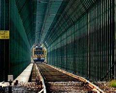 Ponte de ferro sob o rio Mondego (verridário) Tags: trem sony comboio ponte oeste ute eletrica bridge ferro rail ralway train chemindefer caminhodeferro profundidade 2249 mondego treno tren zug 火車 поезд trein 列車