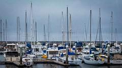 Pillar Point Harbor 10 (CDay DaytimeStudios w/1,000,000 views) Tags: beach boats ca california clouds coastline halfmoonbayca highway1 morningovercast ocean pacificcoast pacificcoasthighway pillarpoint pillarpointharbor water wharf yachts