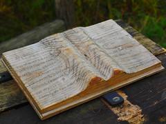 Goethes Geister über den Wassern... (1elf12) Tags: buch book goethe wasser water holz wood harz germany naturmythenpfad braunlage silberteich deutschland mythos cof036 cof036mari cof036hole cof036dmnq cof036uki cof036ally
