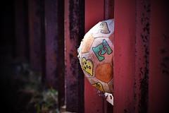Kinder Jaare (roanfourie) Tags: photography nikon d3400 nikkor 70300mm ed dx afp vr f63 dslr raw gimp flickr southafrica africa westrand randfontein september142018 september 2018 spring play ball