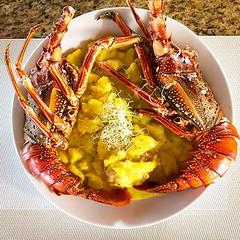 Farol da Praia (faroldapraia) Tags: instagram farol da praia porto seguro bahia restaurant italian food