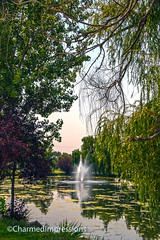Pioneer Park (livininfrostytown) Tags: pond water fountain bridge park pioneerpark bringhamcity utah summer august 2018 trees metal spray waterspray reflection sky bench table picnictable covered