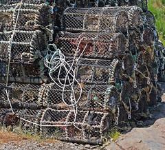 IMG_4046_edited-1 (Lofty1965) Tags: boscastle cornwall lobsterpot