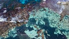 Rottnest Island_Reef_0085