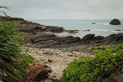 Avant de quitter l'île de Sanxiantai (8pl) Tags: côte plage rochers roche taïwan sanxiantai feuilles buissons galets eau mer océan marin maritime cailloux rochesnoires