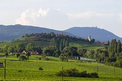 Bienvenue dans la vallée des vins (StephanExposE) Tags: france alsace kaysersberg canon 600d 1635mm 1635mmf28liiusm village city vallée vin vignoble wineyard