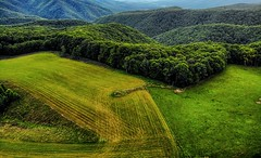 The hay field (Steve4343) Tags: steve4343 appalachian trail cherokee national forest red green blue yellow orange white clouds sky beautiful tennessee autumn beauty johnson county lake watauga cloud colorful woods garden gardens happy leaves rocks wildlife landscape mountain tree trees grass water wood butler summer spring macro flower flowers at hay field dji mavic air