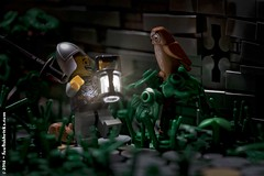 Startled Guard (Foolish Bricks) Tags: medieval guard fear owl scared lego legophotography toyphotography legography minifigures afol