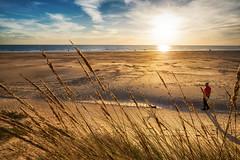 Punta Umbría (dubdream) Tags: puntaumbria andalucía huelva españa beach playa dunes strandhafer beachentrance people dog sun atlantic atlántico ocean water dubdream olympuspenf sky cloud colorimage