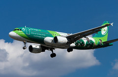 Airbus A320 - Aer Lingus - Irish Rugby Team Livery (phil_king) Tags: aer lingus aircraft aeroplane airliner airbus a320 irish rugby team livery london heathrow airport lhr landing approach aviation
