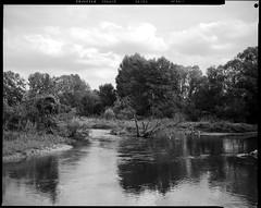 la rivière Ill entre Ostheim et Illhaeusern - Alsace (JJ_REY) Tags: ill rivière river film bw largeformat 4x5 fuji acros100 neopan toyofield 45a fujinon 90mmf56swd epson v800 alsace france