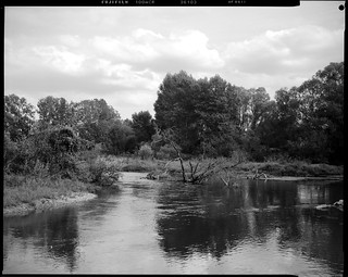 la rivière Ill entre Ostheim et Illhaeusern - Alsace