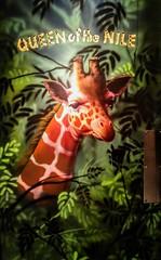 Upon the Ladies Room Door! (jlynfriend) Tags: phonephoto lg disney animalkingdom rainforest restaurant art animal giraffe