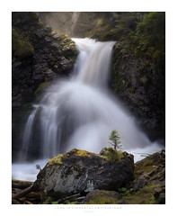 IFFIGBACH (Krzysztof Mikulski) Tags: national park lenk im simmental switzerland waterfall river stream fog rise morning moutains spray pine tree woodland forest camera sony 7r mk 2 lens sigma 100 400 white frame adapter commlite canon e lightroom photoshop color efex pro 4 fir spruce