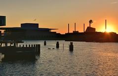 Copenhagen Sunrise (jpellgen (@1179_jp)) Tags: denmark danish dane europe european sigma 1770mm d7200 nikon summer august travel 2018 copenhagen kobenhavn scandinavia scandinavian zealand sun sunrise sunset sea water architecture