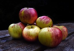 Hand picked apples. (rustyruth1959) Tags: texture wood fruit blackbackground table food apples lowkey saturdayselfchallenge ssc trebetherick kernow cornwall england uk nikon1518mm nikond5600 nikon closeup pixelmator affinityphoto explored explore inexplore