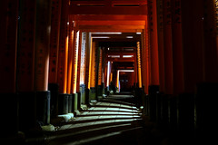 Kyoto - Fushimi Inari Taisha (picsfromsomewhere) Tags: kyoto shrine shinto torii japan japon night nuit lights 鳥居 京都市 日本 kami inari red