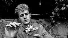 He loves me. He loves me not B&W (Beaux Coller) Tags: jessebauxvancoller photography boy guy blonde portrait artsy flowers hands