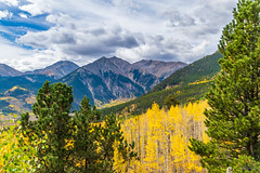 Aspens & mountain (palbion) Tags: blossomsfoliage twinlakes colorado unitedstates us