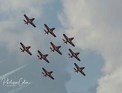 DSC_7182w (Mephisto3) Tags: rcaf snowbirds 431sqdn aerogatineau2018 gatineau acrobatic cynd airshow demo avgeek