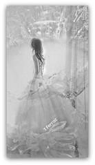 by TF (tereza ferraz) Tags: doubleexposure creativephotos delicate softness overlays transparency