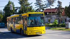 Икарбус ИК103 (Somi303) Tags: икарбус ик103 ик 103 гсп београд високоподни соло аутобус линија 302 гроцка бегаљица ikarbus ik103 ik gsp beograd belgrade solo visokopodni autobus bus grocka begaljica linija