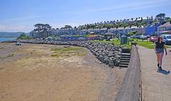 Borth-y-Gest, Nr Porthmadog. North Wales (Minoltakid) Tags: borthygest northwales wales welshseaside welshheritage welshcoast welsh gwynedd geotagged greatbritain uk unitedkingdom seaside street summer streetscene streetphotography seasidecolours sonyrx0 sonydscrx0 buildings building bluesky beach beachscape seasidephotography seafront sunnyday summertime theminoltakid thewelshseaside theseaside 2018 minoltakid rossdevans rx0 dscrx0 day summermemories summersday gb tagged photograph photo photography beachphotography beautifulplace