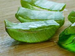 Aloe (shercredeur) Tags: macro macrodreams macromondays hmm macrounlimited remedy aloevera gel green