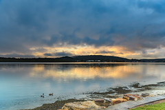 Early Morning Rain Clouds over the Bay (Merrillie) Tags: daybreak woywoy sunrise nature dawn drizzly sky overcast foreshore birds newsouthwales clouds earlymorning nsw brisbanewater australia centralcoast morning cloudy water coastal landscape outdoors waterscape atmosphere rain ducks bay