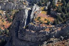 Fall Pockets (arbyreed) Tags: arbyreed smileonsaturday seasonsflora fall trees mountain cascademountain geology utahgeology