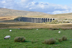 Ribblehead Viaduct (scuba_dooba) Tags: ribbleheadviaduct ribblehead viaduct yorkshire dales uk england bridge