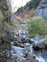 IMG_4943 (August Benjamin) Tags: provocanyon bridalveilfalls cascademountain provoriver lostcreekfalls fall fallcolors waterfall creek leaves trees utah mountains hiking provo